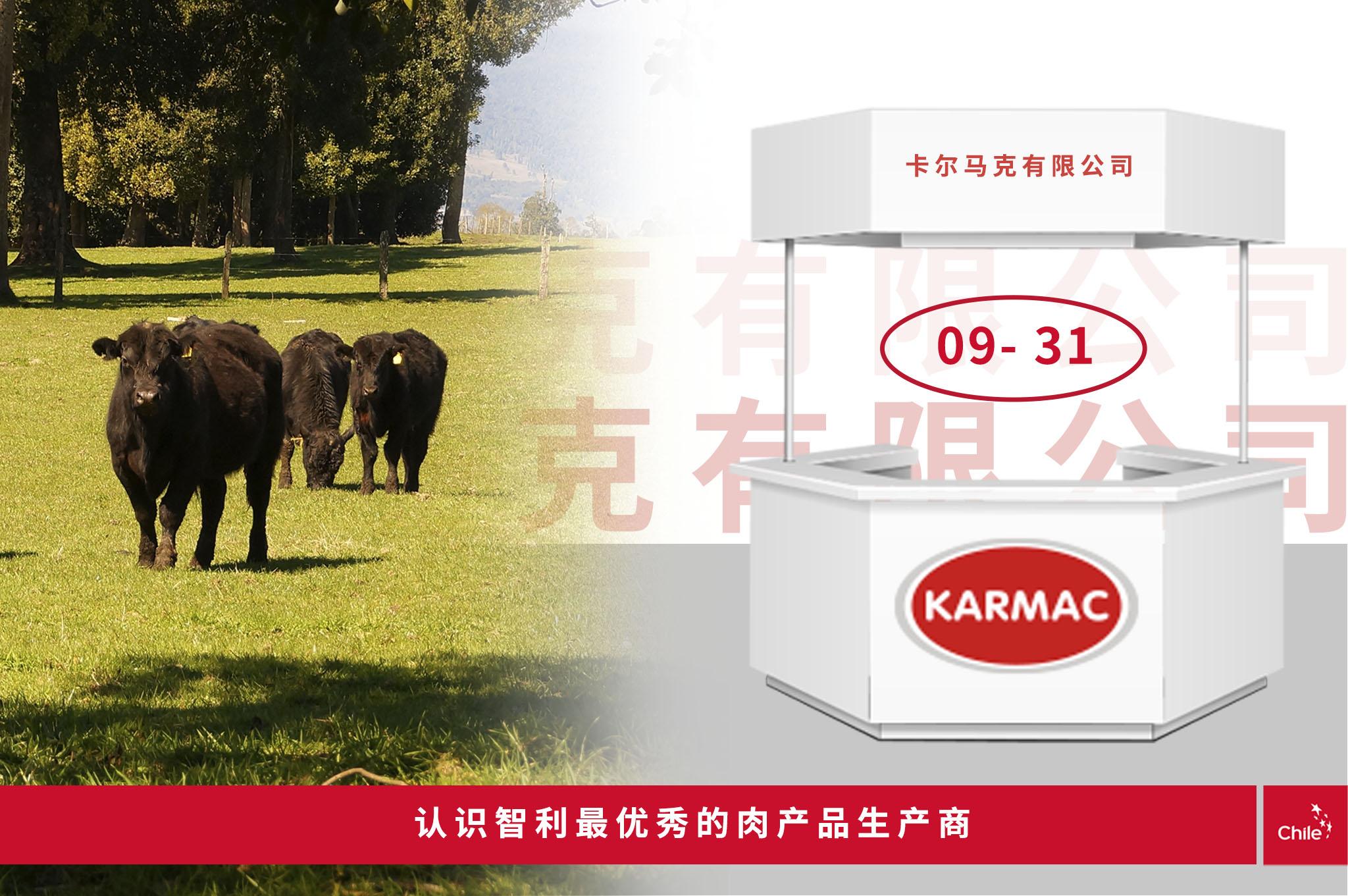 http://faenacar.cl/feriavirtual/wp-content/uploads/2020/11/StandsKarmac.jpg